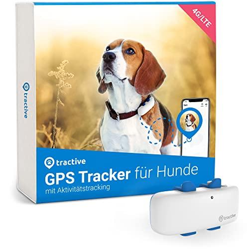 Tractive GPS Tracker für Hunde (2021). Immer wissen, wo dein Hund...