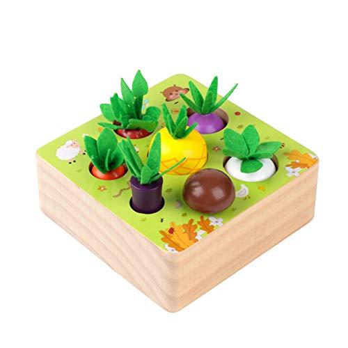 osmanthus Montessori Spielzeug Ab 1 Jahr | Holzspielzeug Baby Karotte...
