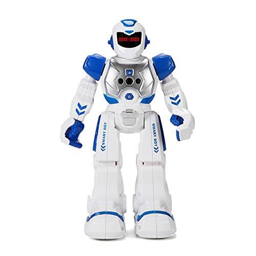 RC Robot Toy Gestenerkennung Programmierbar - Robot Toy Geschenke Für...