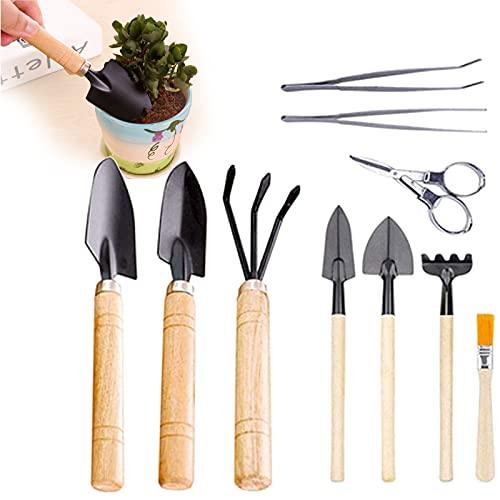 10 Pcs Gartenwerkzeuge Set Klein Gartenwerkzeug Kit Edelstahl...