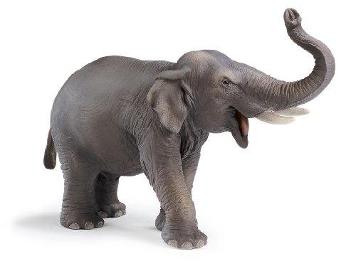 Schleich 14144 - Asiatischer Elefantenbulle