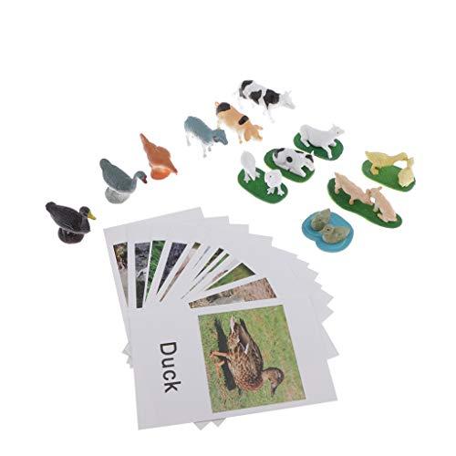 Sharplace Bildung Tiere Spielzeug Bauernhof Tiere Gruppe Modellkarten...