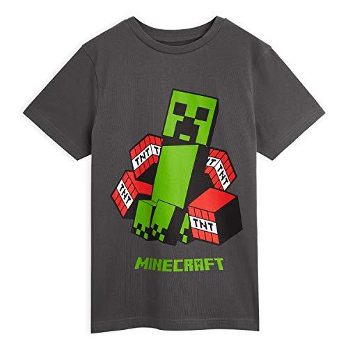 Minecraft T Shirt Jungen, Tshirt Kinder Grau Creeper Figuren,...
