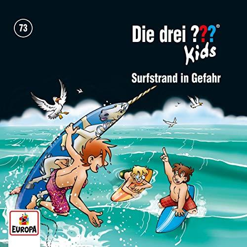 073/Surfstrand in Gefahr