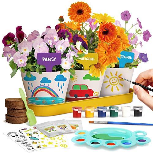 Dr. Daz Malen Garten Anzuchtset Pflanzen Geschenk Kinder Blumen Bonsai...