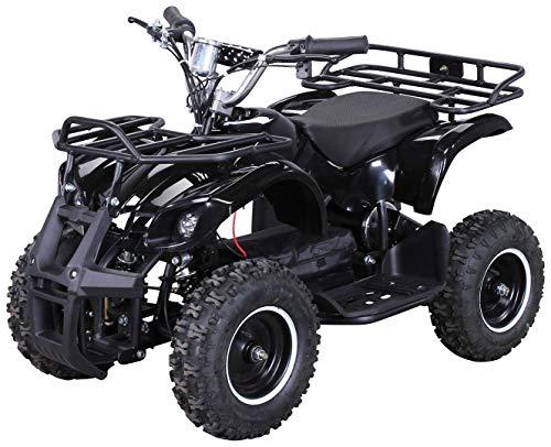Actionbikes Motors Kinder Elektro Miniquad ATV Torino 1000 Watt 36...