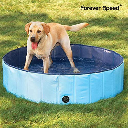 Forever Speed Hundepool,Doggy Pool,Katzenpool,Faltbares Pool,Kinderbadewann,Umweltfreundliche...