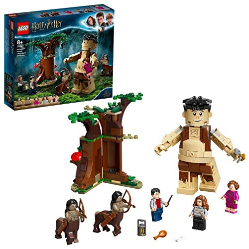 LEGO 75967 Harry Potter Der Verbotene Wald: Begegnung...
