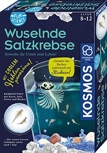 KOSMOS 654160 Fun Science - Wuselnde Salzkrebse, Erwecke die Urzeit zum Leben, Experimentierset für...