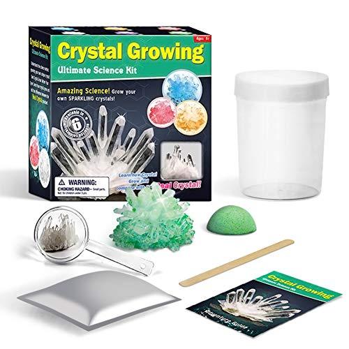 LOVEYue Kids Crystal Growing Planting Science Physik Experiment Kit Lernspielzeug, Perfekt Für Kinder...
