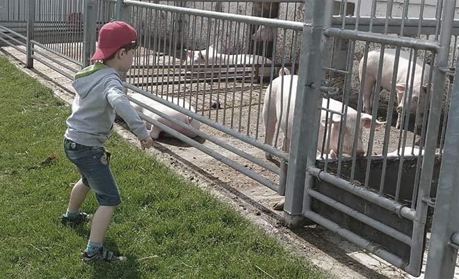 Ein Junge auf dem Bauernhof