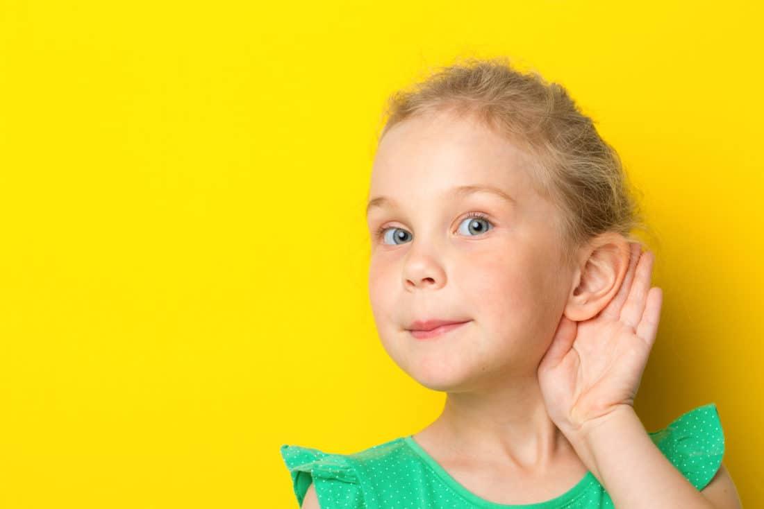 Ohren angelegt