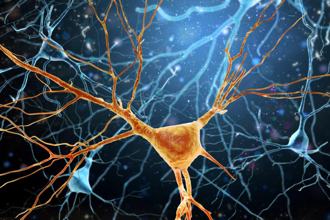 Spiegelneuronen beim Baby