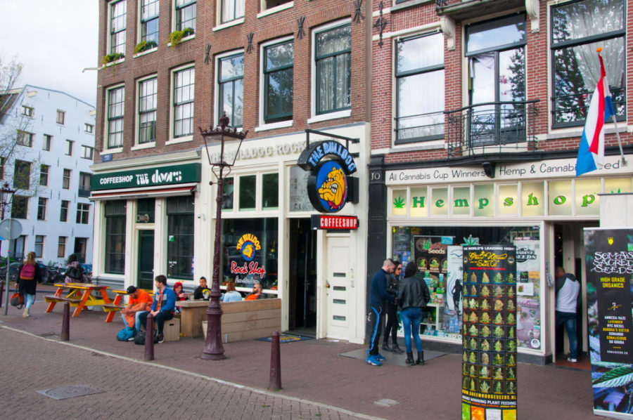 Coffee-Shop Hempshop Amsterdam
