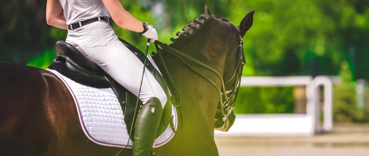 Die besten Pferdefilme