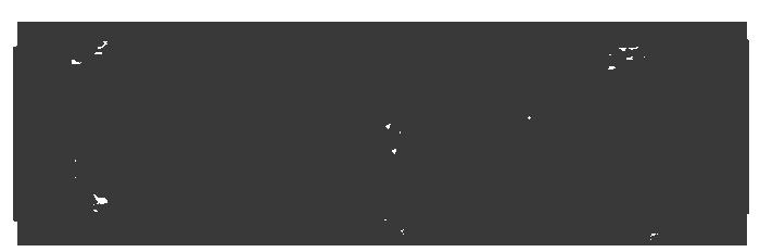NETPAPA