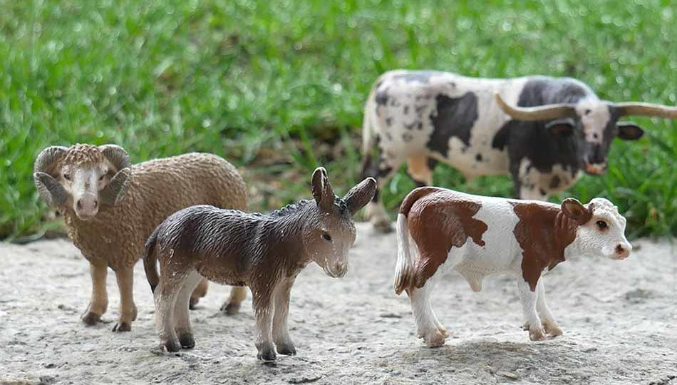 Schleich Bauernhof-Tiere